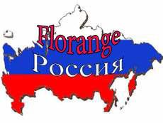 Флоранж в регионах России